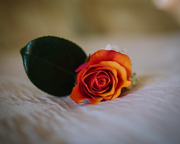 brisbane-australia-wedding-shell-eide-photography-tamara-and-mark4