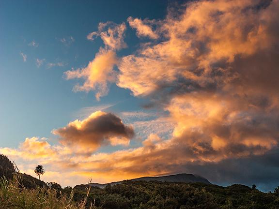 maui-hawaii-shell-eide-and-jonas-kiesecker-photography-17