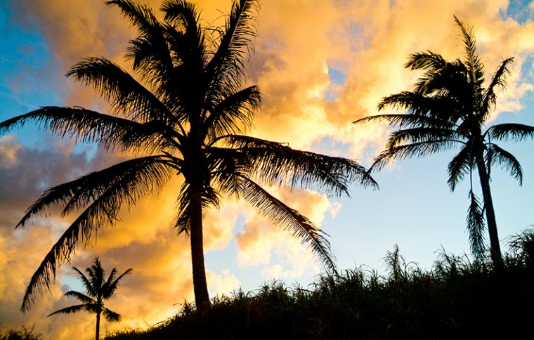 maui-hawaii-shell-eide-and-jonas-kiesecker-photography-4