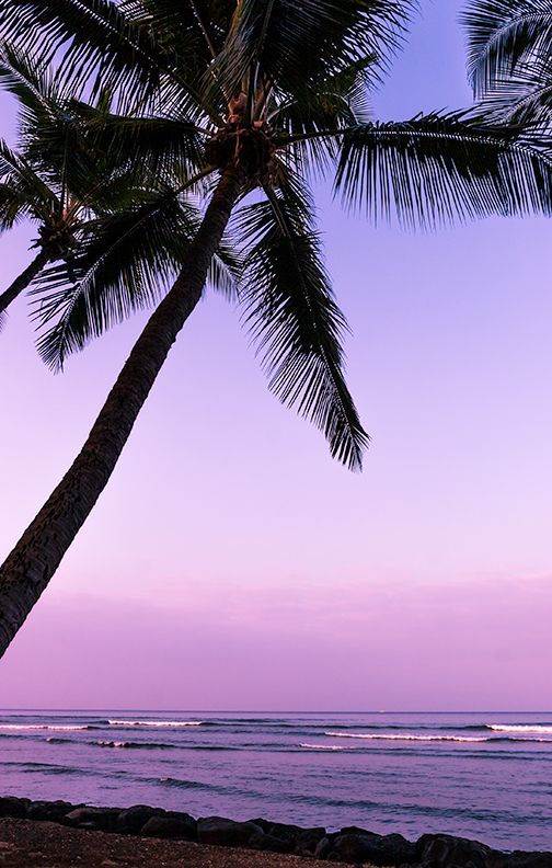 maui-hawaii-shell-eide-and-jonas-kiesecker-photography-5