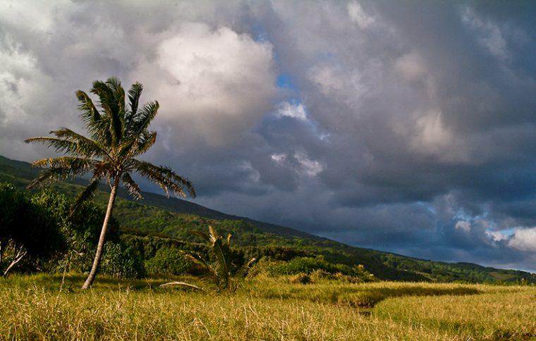 maui-hawaii-shell-eide-and-jonas-kiesecker-photography-8